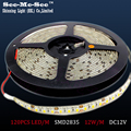 50M/lot  SMD 2835 LED Strip ,DC12V IP65 Waterproof 120LED/M LED Flexible light Ribbon Christmas Decoration,Total 50M,SMDT-28-120