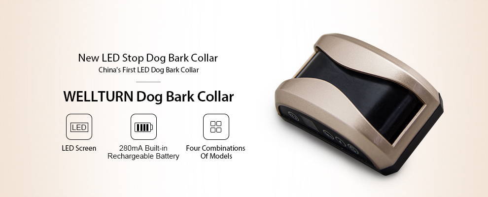 no bark collar
