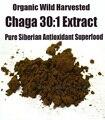 Siberia Chaga Mushroom 30: 1 Extracto de Extracto En Polvo 250g Orgánicos Polyose