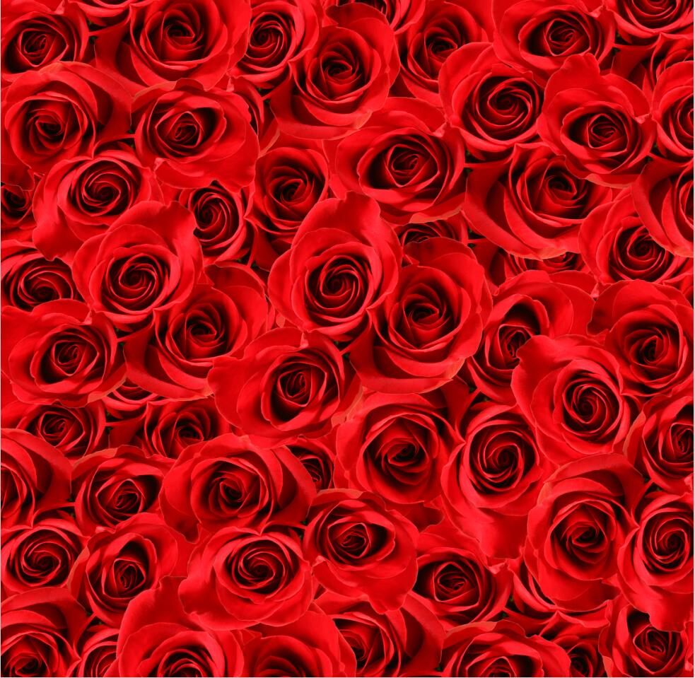 10x10ft Vinyl Custom Photography Backdrops Prop Valentine's day theme Background NTWH-5233 shengyongbao 300cm 200cm vinyl custom photography backdrops brick wall theme photo studio props photography background brw 12