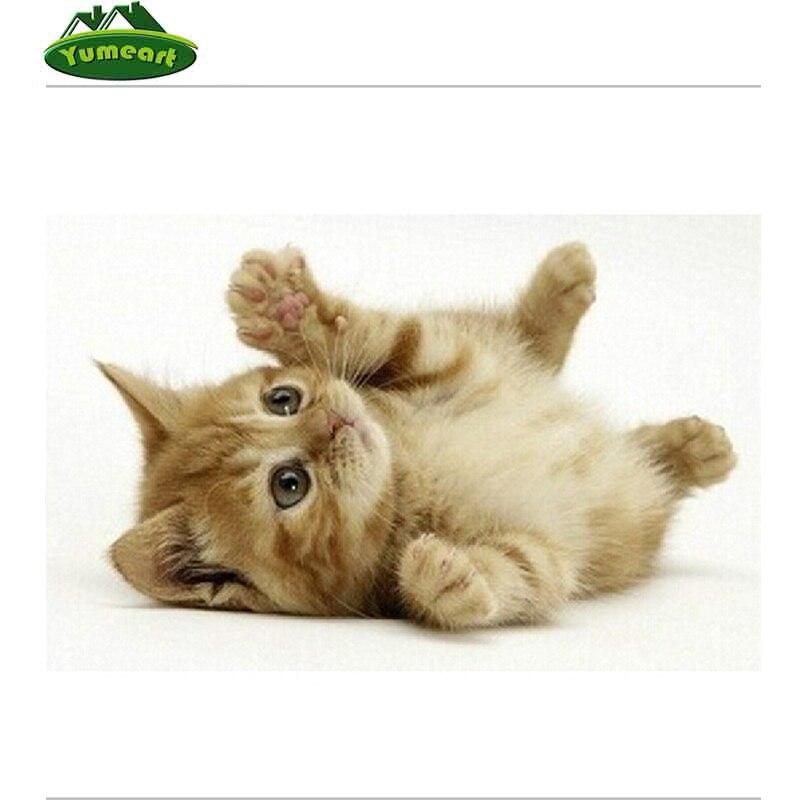 ⑥DIY diamante pintura Cruz puntada kit diamante bordado gato persa ...