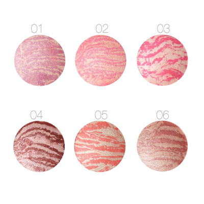 100Pcs/Lot Focallure Hot Sale Professional Cheek 6 Colors Makeup Baked Blush Bronzer Blusher Long-lasting Cosmetic Blush Palette