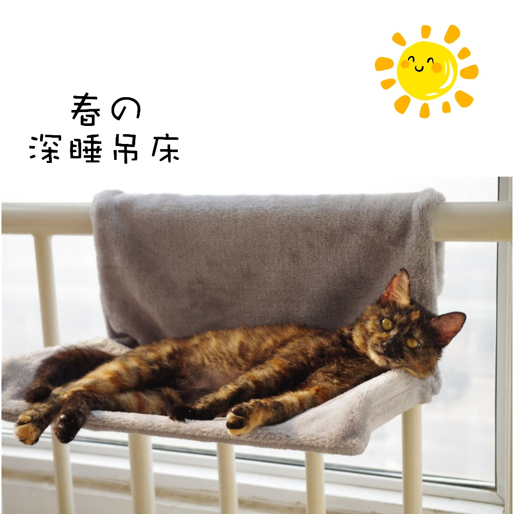 Luxury Cat Window Hammock Bed Plush Autumn Winter Little Small Animal Carrier Bed Sunny Seat Pet House Bedding Product Wholesale