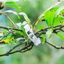150 шт. зажимы для подвязки томатов шпалеры Садовый цветок Овощной связующий шпагат Поддержка растений лоза садовая теплица овощи Сад# T1P