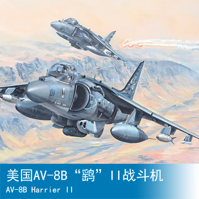 Assembly model Trumpet model 1/18 American aircraft aircraft Toys assembly model kyohko hasegawa 1 72 mitsubishi g3m2 g3m3 96 land based aircraft aircraft toys