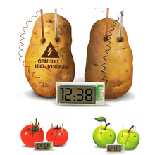 free shipping Potato Clock Novel Green Science Project Experiment Kit kids Lab Home School Toy