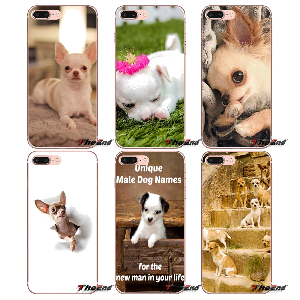 MaiYaCa Chihuahua Cute Dog Puppy Phone Case Cover for iPhone