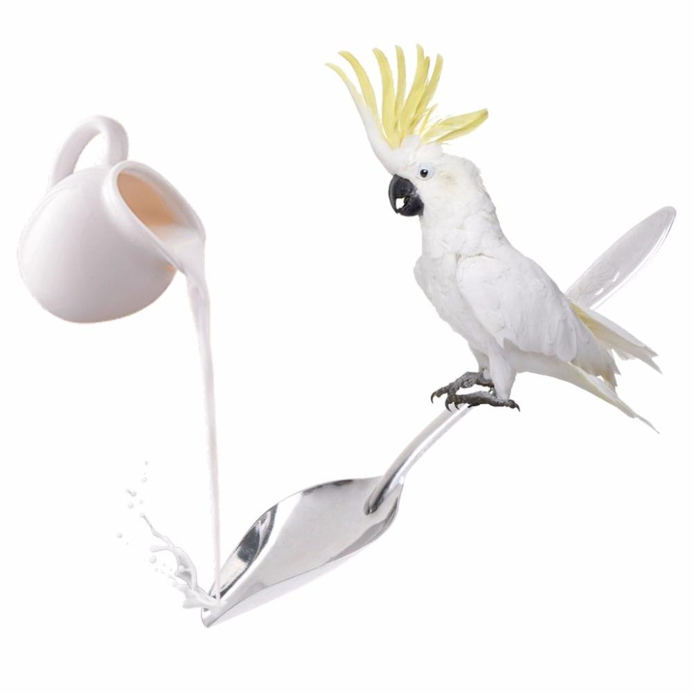 Bird Parrot Feeding Spoon Stainless Steel Water Milk Powder Feeder Spoons Bird Supplies Кормушка
