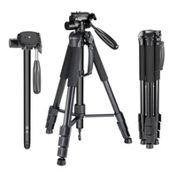 Camera Tripod Portable Flexible With Quick Release Plate With Ball Head Angle Lock Rubber Foot Pad Panning Dial Table Tripod