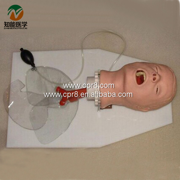 BIX-J50 Trachea Intubation Training Model W011 iso economic newborn baby intubation training model intubation trainer