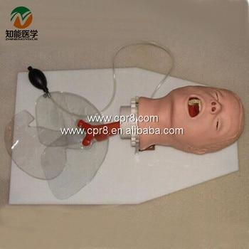 BIX-J50 Trachea Intubation Training Model W011