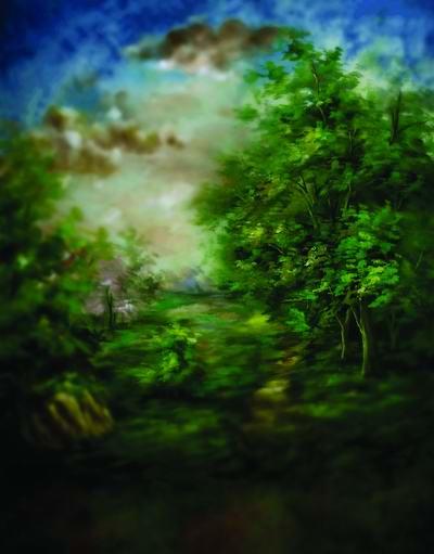 Peinture Milieux 150x200 Cm Forêt Photos Studios Vert écran Décors