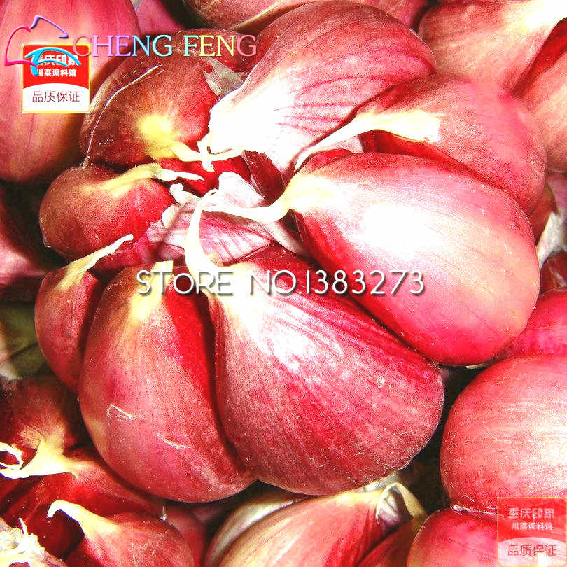 100pcs Garlic Plants Red Healthy Bonsai Plants Green Vegetable Plants  Decoration Very Easy Grow Home & Garden Free Shipping