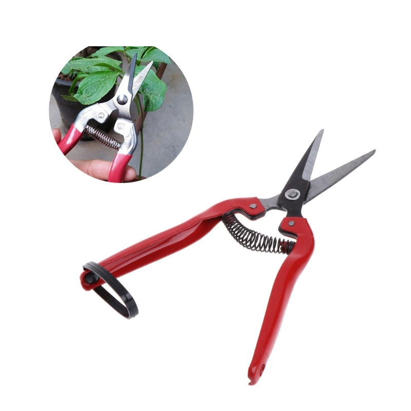 Garden Plant Pruning Shears Cutter Gardening Tools Bonsai Grass Flower Scissors Secator Grafting Pruning Pruning New Hand Tool