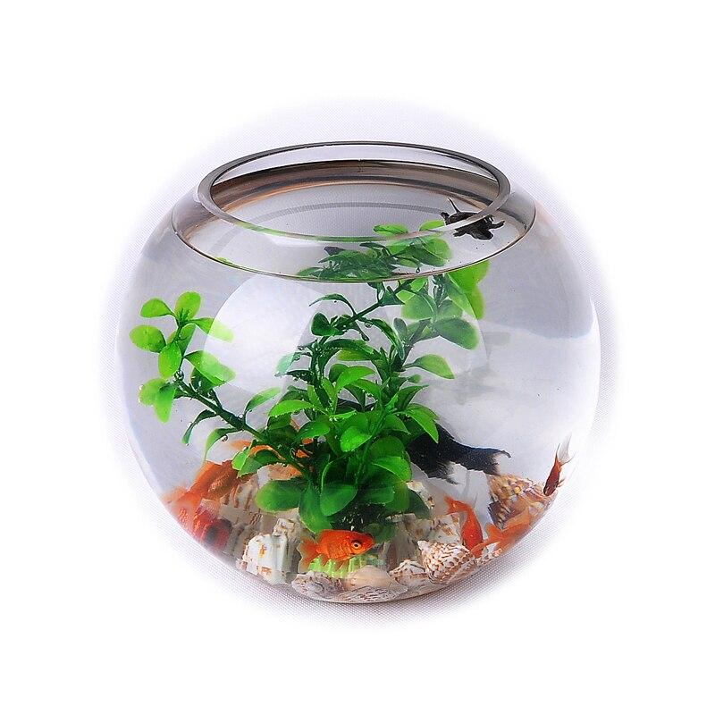 Transparan Tangki Ikan Kaca Hidroponik Bulat Hijau Lobak Besar Botol Produk Akuarium Ornamen Ruang Tamu Ornamen Jardini Aquarium Set Product Unitproduction Microscope Aliexpress