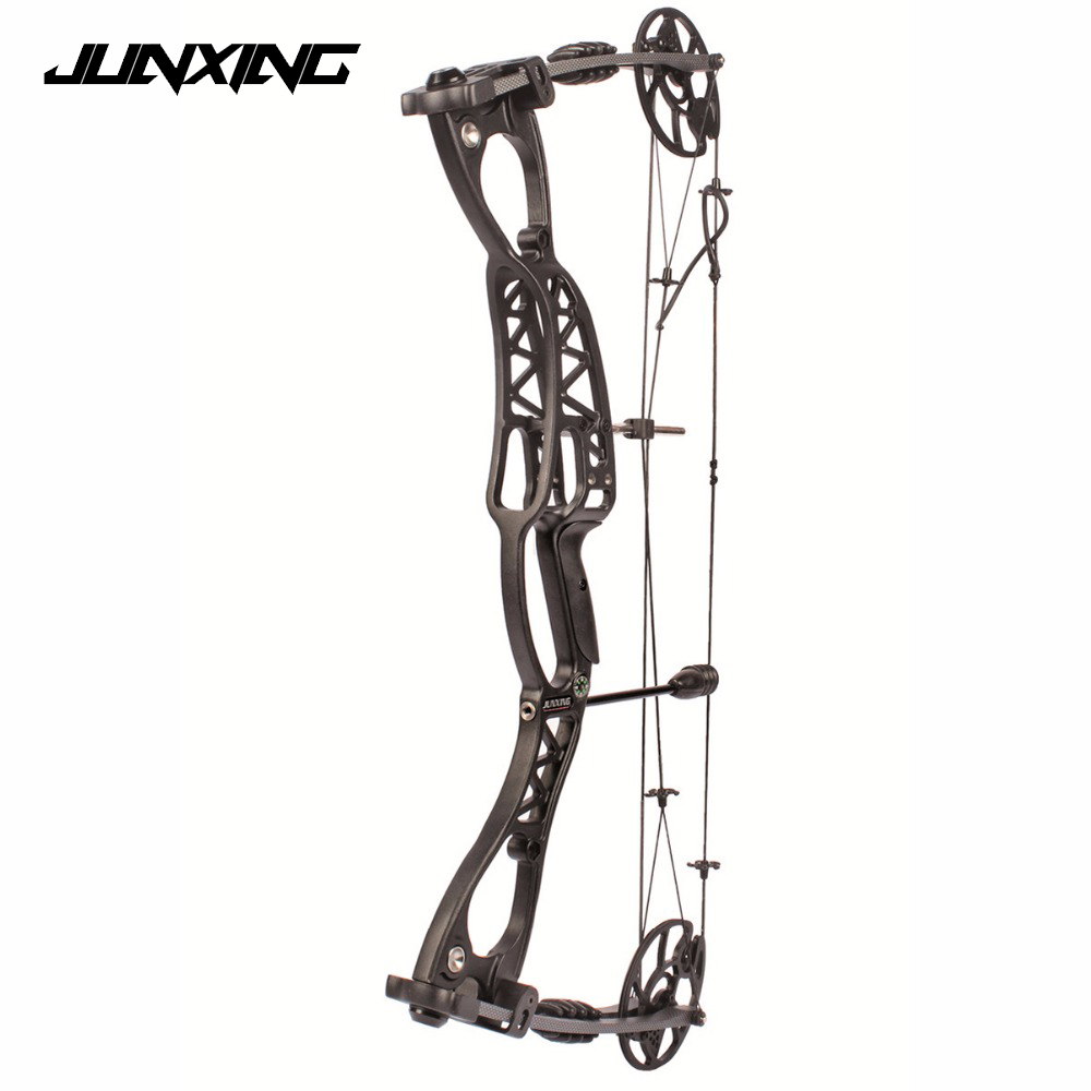 Adjustable 40-65 LBS Compound Bow 30 Inch Black Handle Speed 300 feet/s for Outdoor Archery Hunting Shooting