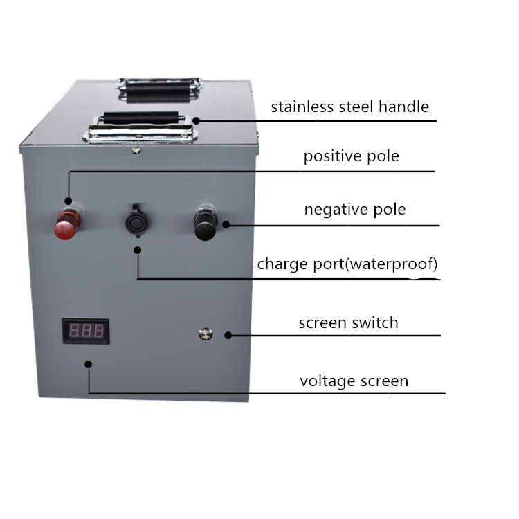 Ad alta potenza 12V 24V 200AH 300AH 400AH Al Litio ferro fosfato Batteria agli ioni di li per camper/di emergenza esterna /pesca fonte di Alimentazione