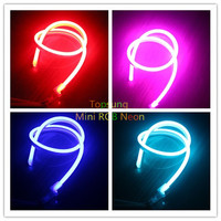 33' reel 10m 220v Flexible 5050 smd rgb led neon rainbow strip lights flat 11x19mm color changing with controller