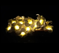 20 LED simulated egg flower light string led battery box holiday wedding Christmas decorative lights