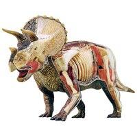 4D Big triceratops Intelligence Assembling Toy Animal Organ Anatomy Model Medical Teaching DIY Popular Science Appliances