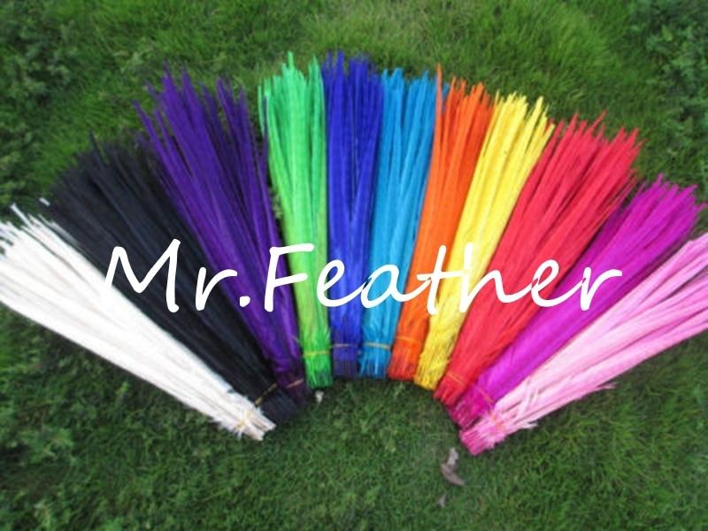 Livraison gratuite 500 pcs chaque couleur Faisan plumes 30 35 cm 12 14 pouces blanchis et teints ringneck plume de faisan dans Plume de Maison & Jardin