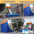 Inflatable Biggors Cheap Garden Jumping Castles Inflatable Water Slide With Air Blowers Shipping by Sea
