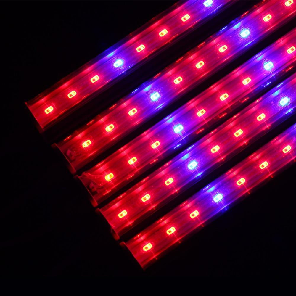 lowest price SMD2835 Waterproof LED Strip Motion Sensor Light Tira LED 220V to 12V Auto ON OFF Flexible Neon Tape 1M 5M Ledstrip Power Supply