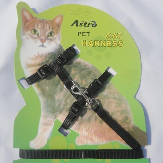 1.2m Nylon Adjustable Safety Pet Cat Kitten Belt Lead Leash Halter Collar Clasp Soft Traction Harness Rope Training Walking