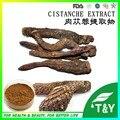 100g deserticola Cistanche Extrato Naturel com frete grátis