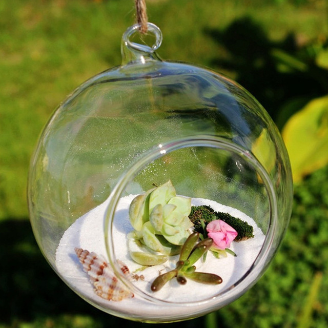 petite boule globe forme effacer transparent suspendus vase en verre fleur plantes terrarium. Black Bedroom Furniture Sets. Home Design Ideas