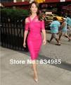 Latest Style 2016 Elegant Sexy Mini Free Shipping Rosy Short Celebrity Dresses Red Carpet Evening Prom Dresses