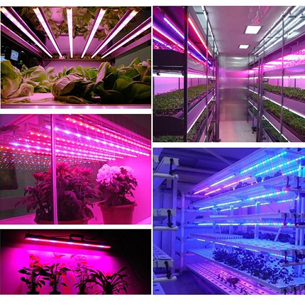 Levou Crescer Luzes itimo ip65 iluminação led cresce Marca : Itimo