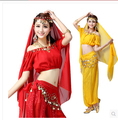 Women Halloween Cosplay Party Wedding Belly Dancer Aladdin Princess Jasmine Costume Adults(only top+pants)