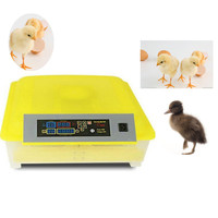 Automatic Egg Incubator China 48 Digital Clear Egg Turning Temperature Control Farm Home Hatchery Machine Chicken
