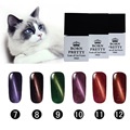 6 Bottles 10Ml BORN PRETTY Magnetic Cat Eye Gel Manicure Soak Off UV Gel Polish 7-12 No Black Base Needed