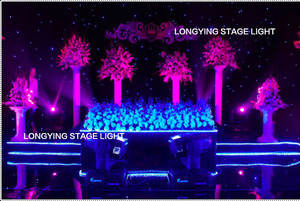 Image 4 - Free Shipping 4m*6m Blue / White LED Star Curtain LED Starry Sky Theater Curtain Wedding Backdrop Decoration For Events