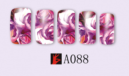A088(1)