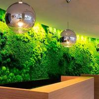 Antler Eternal Moss Plant Wall Artificial Plant Lawn DIY Background Wall Decoration House Wall Bonsai Accessories