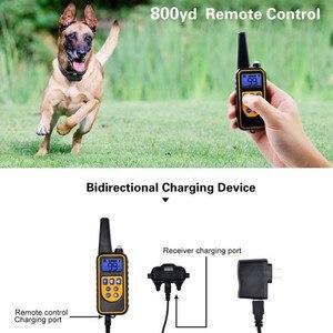 Image 5 - 800yd Elektrische fernbedienung Hund Ausbildung Kragen Wasserdichte Wiederaufladbare mit LCD Display für Alle Größe beep Schock Vibration modus 40% off