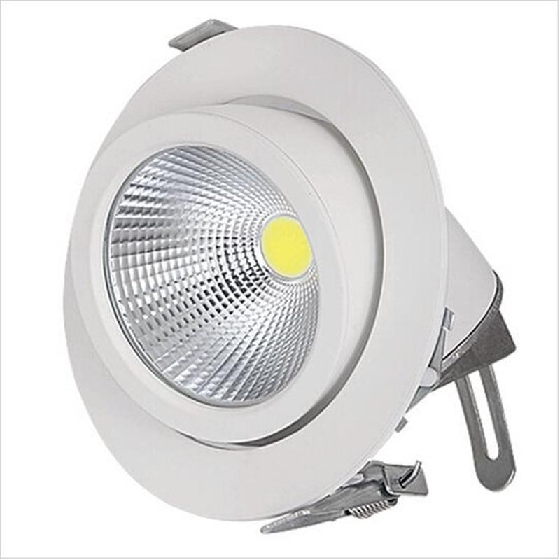 Adjustable 25w 40w Cob Trunk Lamp Led Downlight Down Light
