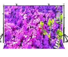 150x220cm Purple Flowers Backdrop Beautiful Luxuriant Photography Background for Camera Photo Props