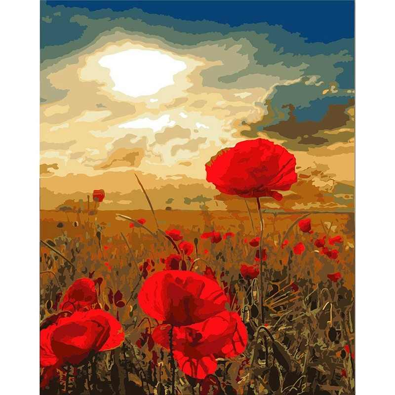 Beautiful Red poppy flower Picture Painting By Numbers DIY Digital Canvas Oil Painting Home Decor For Living Room Wall Art DY571