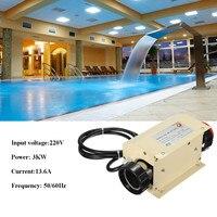 SPA водонагреватель спортивные 3KW Электрический плавательный бассейн гидромассажная Ванна нагрева подогреватель воды в ванной термостат 220