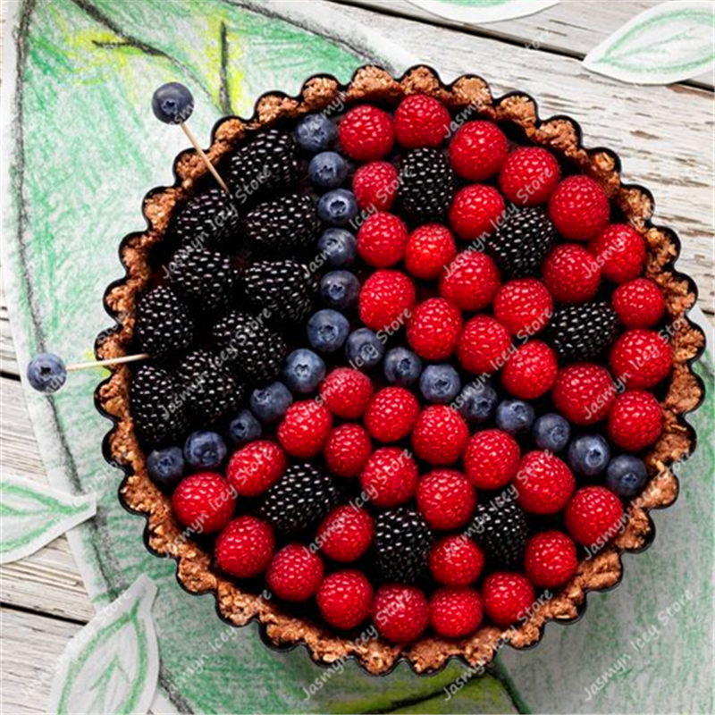1000 Pcs/Lot Berry Tree Bonsai Plants Delicious Fruit 600 Raspberry+200Blackberry+200Blueberry Potted Planting for Home Garden