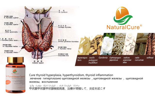 NaturalCure Cure Thyroid Diseases Caps-ules, Cure Thyroid Swelling, Balance Thyroid Hormone Secretion, TCM Chinese Med-icines