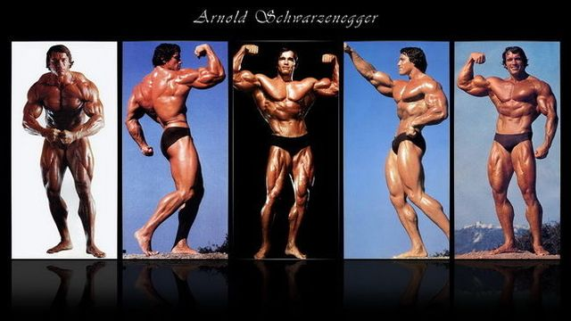 Image result for arnold schwarzenegger body builder pic