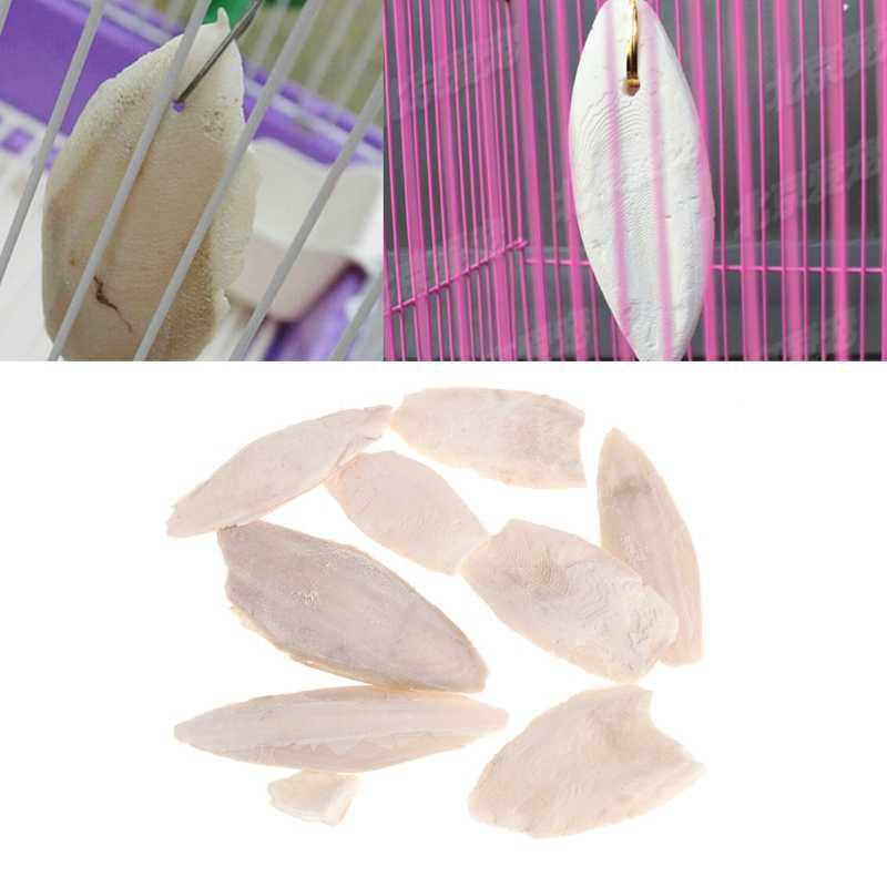 1 バッグ甲イカセピア骨 cuttle 魚鳥食品カルシウム pickstone ペット