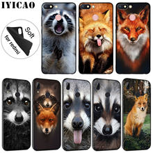 IYICAO Animal Raccoon Fox Soft Silicone Phone Case for Xiaomi Redmi K20 8A 7A 6A 5A S2 4X 4A GO Note 8 7 5 Plus 6 Pro Cover(China)