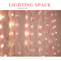 Led Curtain Light Girl INS Lighting Indoor Decoration Copper Lighting String 3X3 Remote Control USB LED Feather Curtain Lamp