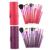 Portátil 12 Unids/set Pro Nylon Suave Pincel de Maquillaje Conjunto Con LA PU cepillo redondo titular de la pluma de cuero caja de almacenamiento de cosméticos herramientas de office uso